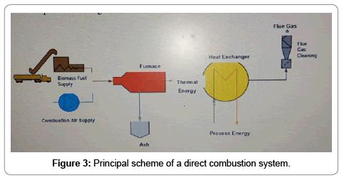 fundamentals-renewable-energy-applications-combustion