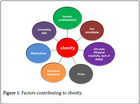 The Impact Of Gut Microbiota On Host Obesity