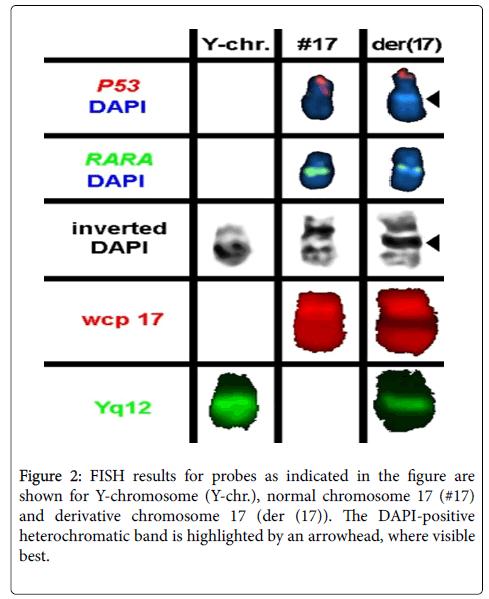 benign and pathological chromosomal imbalances liehr thomas