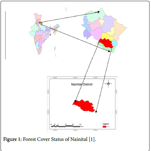 geophysics-remote-sensing-Forest-Cover