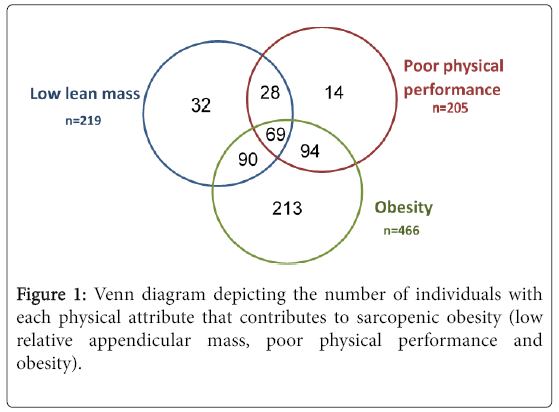Sarcopenic Obesity And Falls In The Elderly