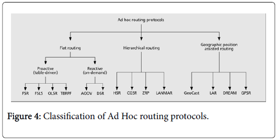 Examining Possible Supplementary Nature of Routing Protocols