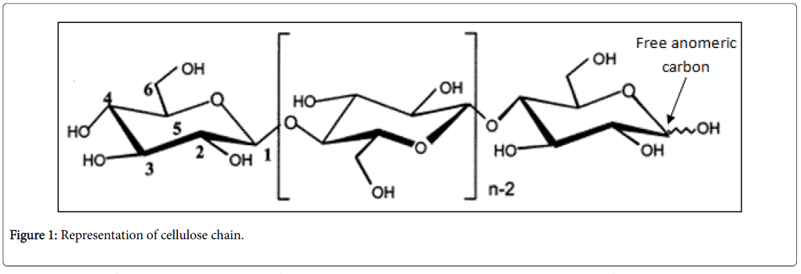 glycobiology-cellulose-chain