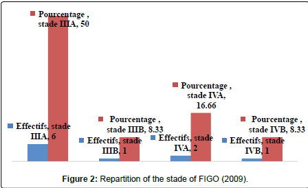 gynecology-obstetrics-Repartition-stade