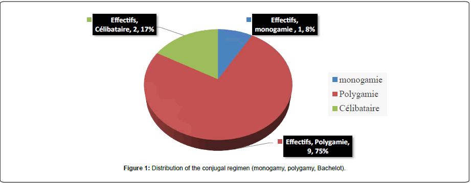 gynecology-obstetrics-conjugal-regimen