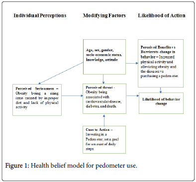 Using The Health Belief Model Could The Use Of Pedometers Encourage