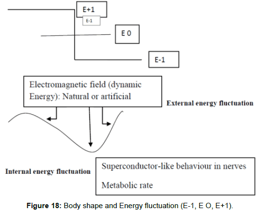health-medical-informatics-Energy-fluctuation