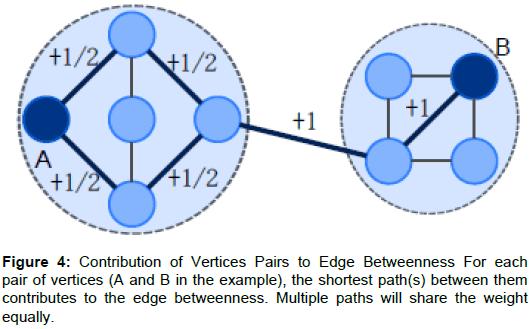 health-medical-informatics-Vertices-Pairs-Edge