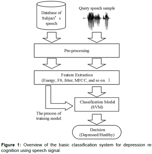 Detecting Depression in Speech: A Multi-classifier System