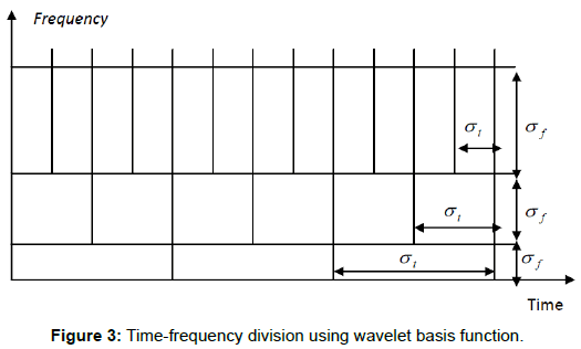 health-medical-informatics-wavelet-basis-function