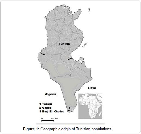hereditary-genetics-Geographic