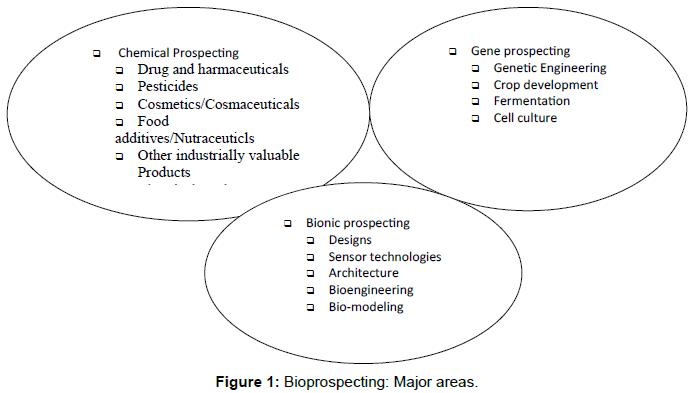homeopathy-ayurvedic-Bioprospecting-Major-areas