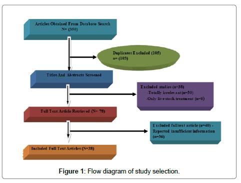 homeopathy-ayurvedic-medicine-study-selection