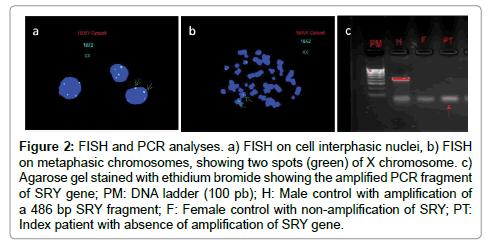 human-genetics-embryology-PCR-analyses