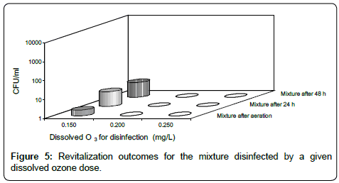 Experimental Tests for Ozone Disinfection Treatment In a Small