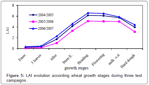 Water Requirement Modelling for Wheat under Arid Climatic