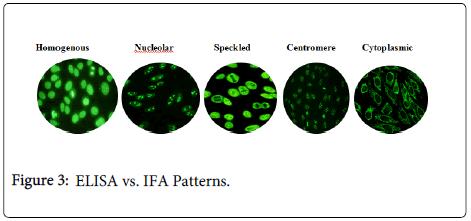 immunome-research-ELISA-IFA