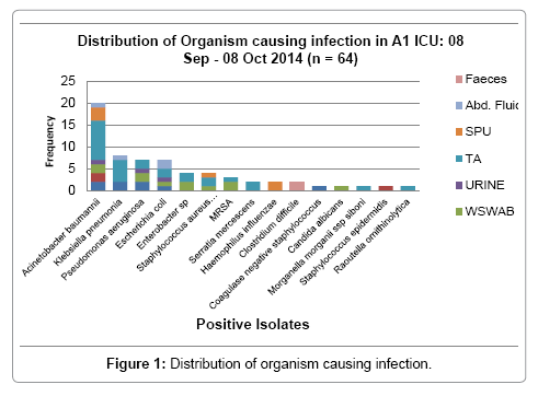 infectious-diseases-and-medicine-organism