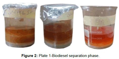 innovative-energy-policies-Biodiesel-separation-phase
