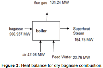 innovative-energy-policies-dry-bagasse-combustion