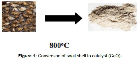 innovative-energy-policies-snail-shell-catalyst