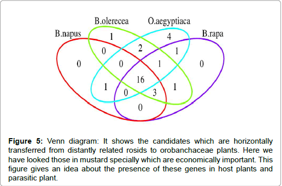 journal-plant-genetics-breeding-Venn-diagram