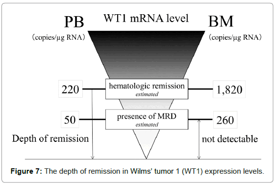 leukemia-remission-Wilms
