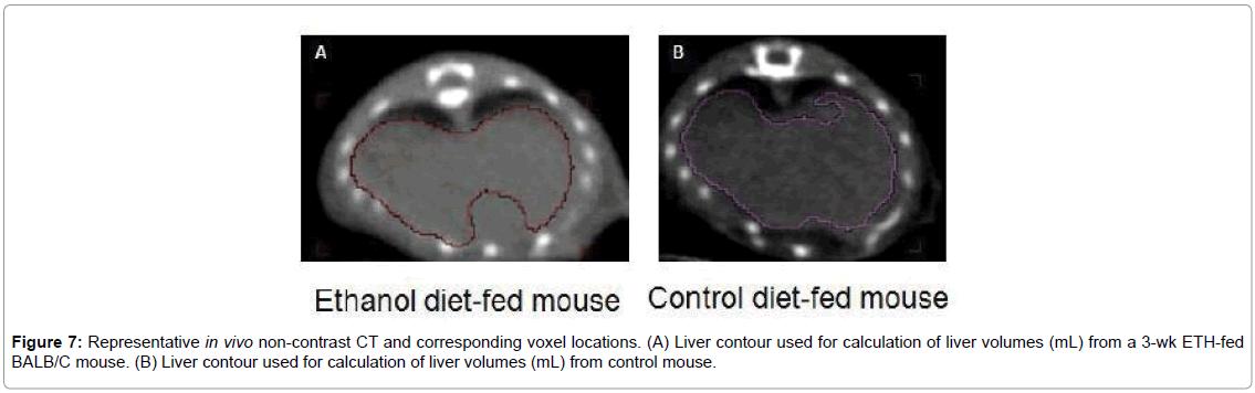 liver-control-mouse
