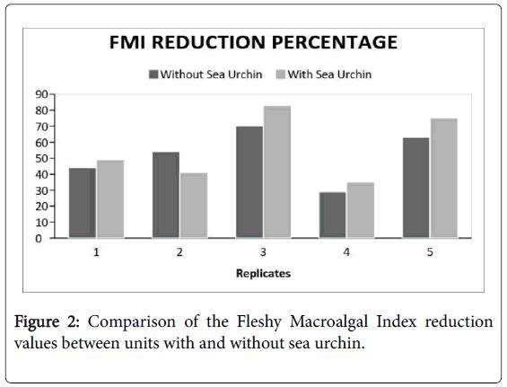 marine-science-Macroalgal-Index