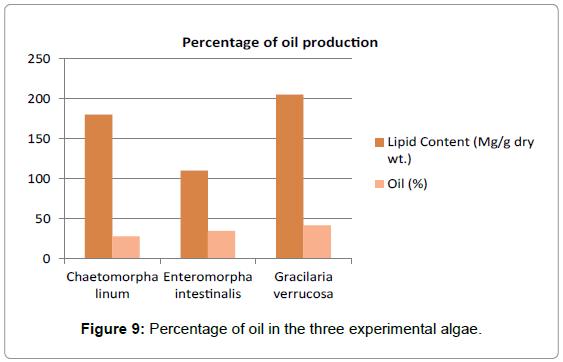 marine-science-Percentage-oil