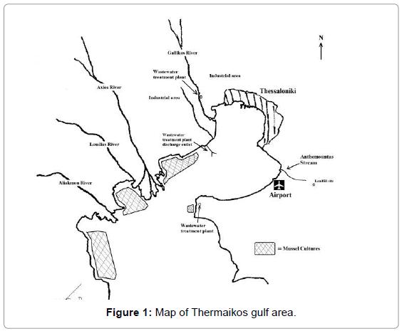 marine-science-Thermaikos-gulf