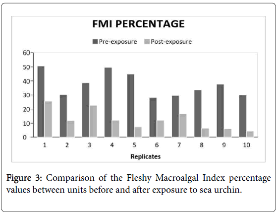 marine-science-exposure-sea-urchin