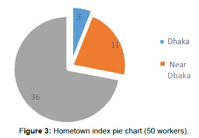 mass-communication-journalism-hometown-index-pie