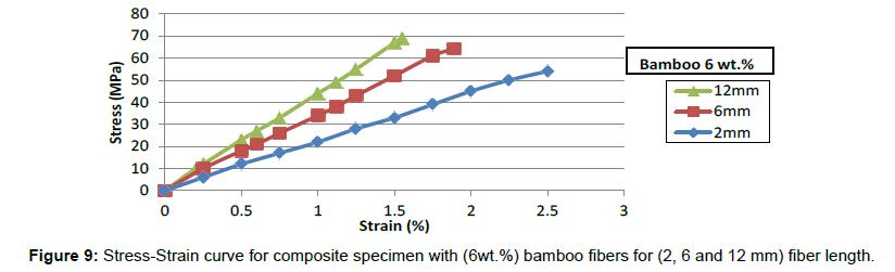 material-sciences-engineering-composite-specimen-bamboo