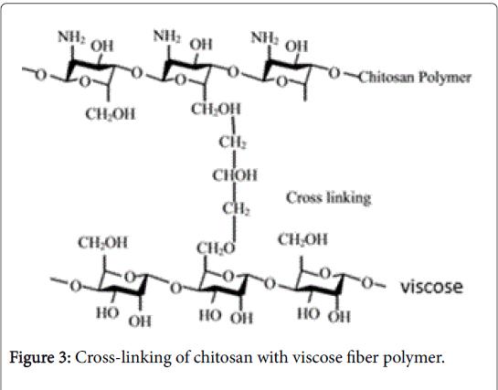 materials-science-fiber-polymer