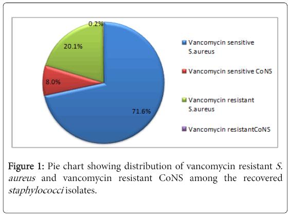 medical-microbiology-diagnosis-vancomycin-resistant