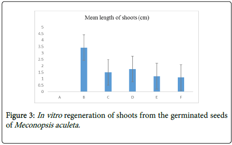 medicinal-aromatic-plants-regeneration