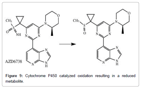 medicinal-chemistry-Cytochrome