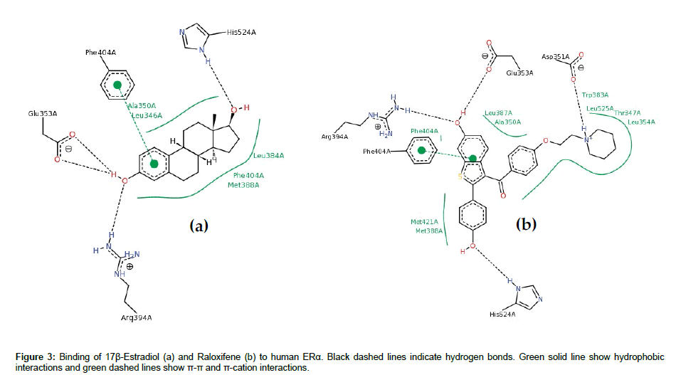 medicinal-chemistry-Green-solid