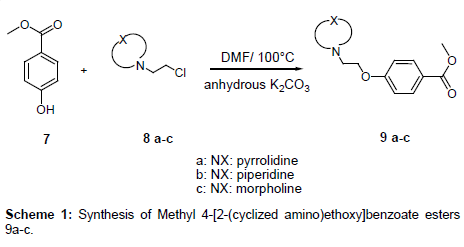 medicinal-chemistry-benzoate-esters