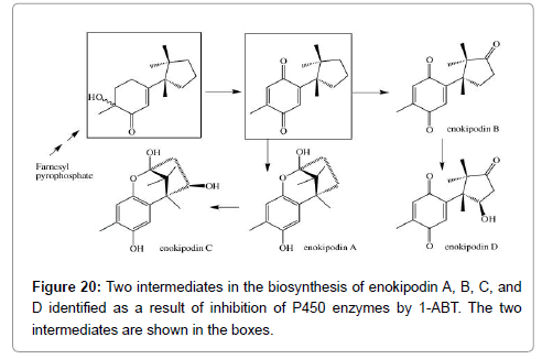 medicinal-chemistry-biosynthesis
