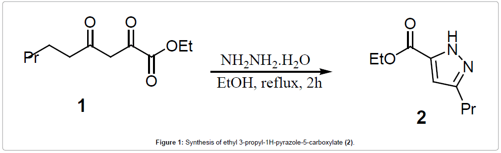 medicinal-chemistry-carboxylate