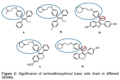 medicinal-chemistry-chain