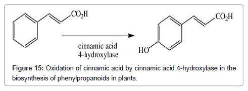 medicinal-chemistry-cinnamic