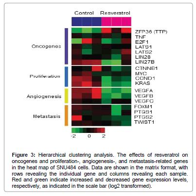 medicinal-chemistry-clustering