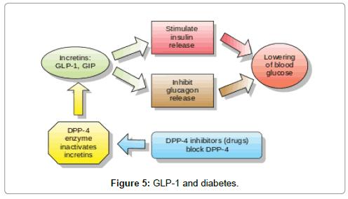 medicinal-chemistry-diabetes