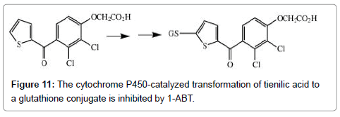 1-Aminobenzotriazole: A Mechanism-Based Cytochrome P450