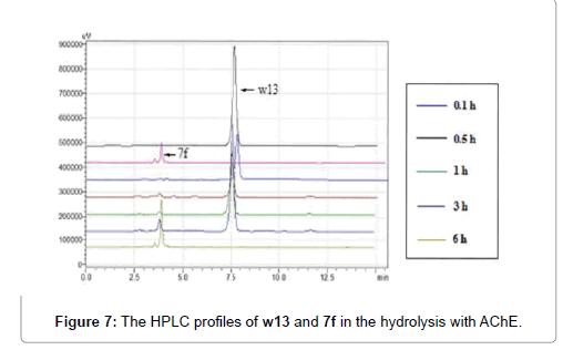 medicinal-chemistry-hydrolysis