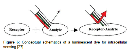 medicinal-chemistry-intracellular-sensing