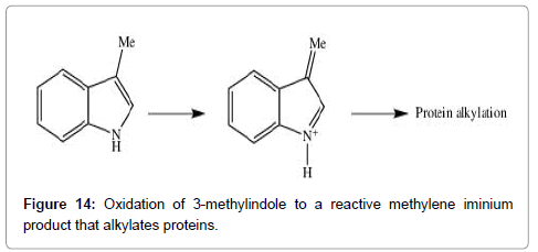 medicinal-chemistry-methylindole